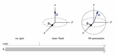 transientEPR-laser.jpg
